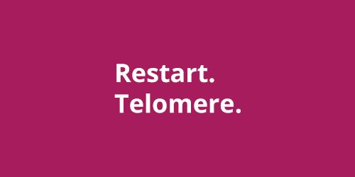 perezagruzka-telomery